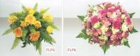 FLP5 MODERN STAR BURST POSY