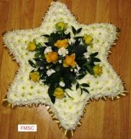 FMSC BASED STAR