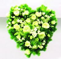 FLH1 MEADOW HEART